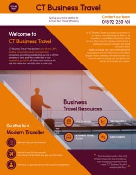 Free Travel Business Flyer Template